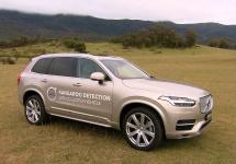 Volvo dezvoltă o tehnologie de detectare a cangurilor; aceasta este testată în Australia