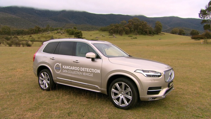 volvo-developing-kangaroo-detection-technology-in-australia-video_3